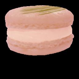Macaroon Grapefrukt
